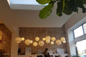 CoeLux California Kitchen Hospitality Lighting  (2)